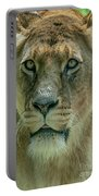 Lioness Female Lion 2 Portable Battery Charger