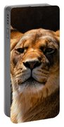 Lioness Hey Are You Looking At Me Portable Battery Charger