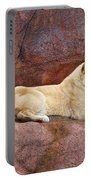 Lioness On A Red Rock Portable Battery Charger