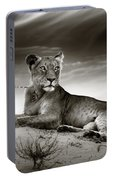 Lioness On Desert Dune Portable Battery Charger