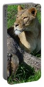 Lioness2 Portable Battery Charger