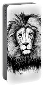 Lionking Portable Battery Charger