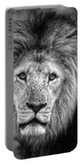 Lion's Eyes Portable Battery Charger