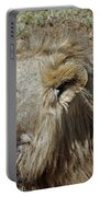 Lions Head Portable Battery Charger