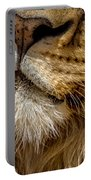 Lions Mouth 2 Portable Battery Charger