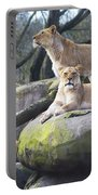 Lions Posing Portable Battery Charger