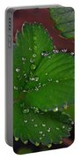Liquid Pearls On Strawberry Leaves Portable Battery Charger