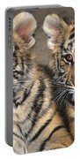 Little Angels Bengal Tigers Endangered Wildlife Rescue Portable Battery Charger
