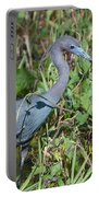 Little Blue Heron 2 Portable Battery Charger