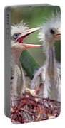 Little Blue Heron Egretta Caerulea Portable Battery Charger