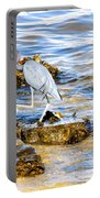 Little Blue Heron Portable Battery Charger