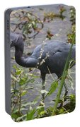 Little Blue Heron - Waiting For Prey Portable Battery Charger
