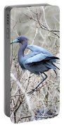Little Blue In Rookery Louisiana Portable Battery Charger