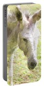 Little Burro Portable Battery Charger