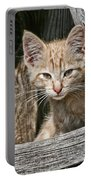 Little Charlie - Kitten By Wagon Wheel - Casper Wyoming Portable Battery Charger