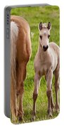 Little Foal Portable Battery Charger