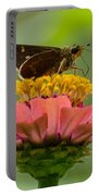 Little Glassywing Skipper Butterfly Portable Battery Charger