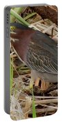 Little Green Heron Portable Battery Charger