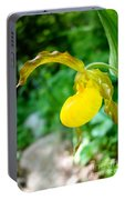 Little Lady Slipper Portable Battery Charger