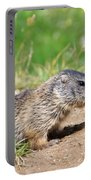 Little Marmots Portable Battery Charger