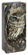 Little Owl 6 Portable Battery Charger