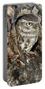 Little Owl In Hollow Tree Portable Battery Charger