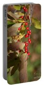Little Red Berries Portable Battery Charger