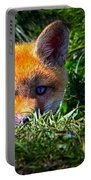 Little Red Fox Portable Battery Charger by Bob Orsillo