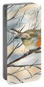 Little Robin Portable Battery Charger