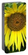 Little Sunshine Portable Battery Charger