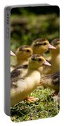Yellow Muscovy Duck Ducklings Running Fast  Portable Battery Charger