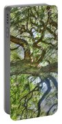 Live Oak Tree Portable Battery Charger