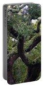 Live Oak Tree Portable Battery Charger