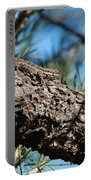 Lizard Bathing In The Sunshine Portable Battery Charger