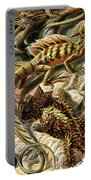 Lizard Detail II Portable Battery Charger