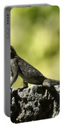 Lizard On The Wall Portable Battery Charger