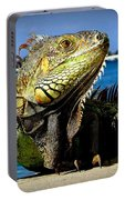 Lizard Sunbathing In Miami Portable Battery Charger