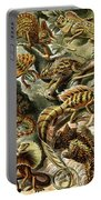 Lizards Lizards And More Lizards Portable Battery Charger