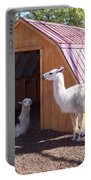 Llama Just Chilling Portable Battery Charger