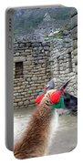 Llama Touring Machu Picchu Portable Battery Charger