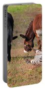 Lmao  Mules And Zebra - Featured In Wildlife Group Portable Battery Charger