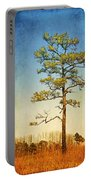 Loblolly Pine Along The Chesapeake Portable Battery Charger
