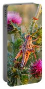 Locust And Thistle 2am-110423 Portable Battery Charger