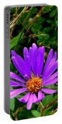 Lone Aster Portable Battery Charger