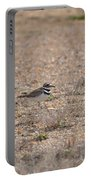 Lone Killdeer Portable Battery Charger
