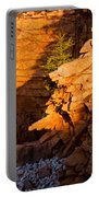 Lone Pine 2621 Portable Battery Charger