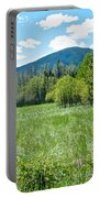 Lone Pine Prairie South Of Polebridge In Glacier Np- Mt  Portable Battery Charger