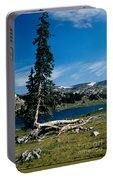 Lone Tree At Pass Portable Battery Charger