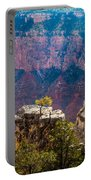 Lone Tree On Outcrop Grand Canyon Portable Battery Charger