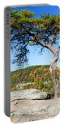 Lonely Lonesome Pine Portable Battery Charger